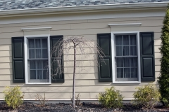 Before American WeatherTECHS Windows