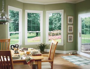 Double Hung Window Cincinnati & Columbus